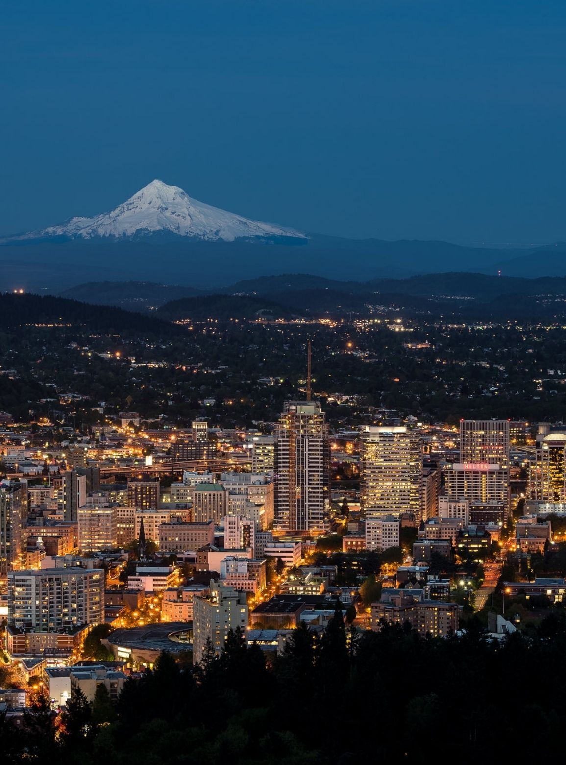 overview of downtown Portland Oregon real estate at night, Buyers Agent Portland About page