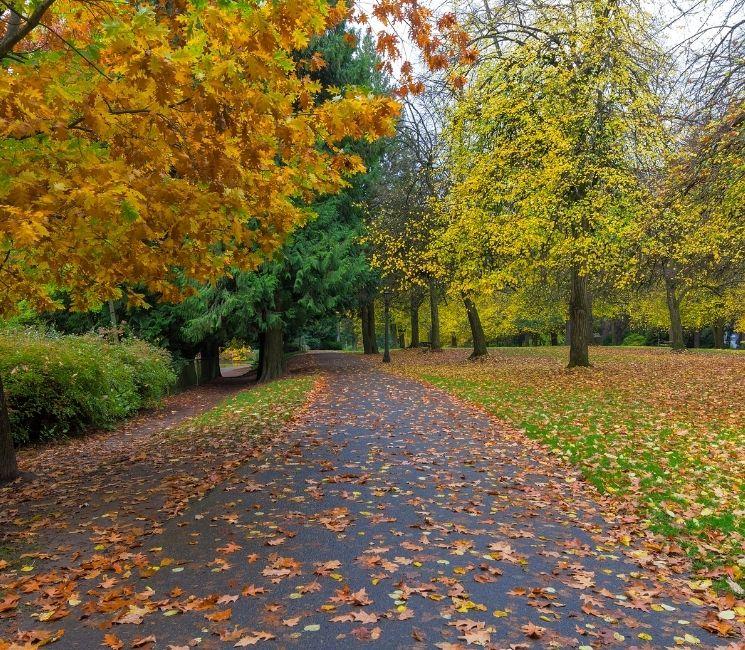 Laurelhurst park in the fall, Northeast Portland