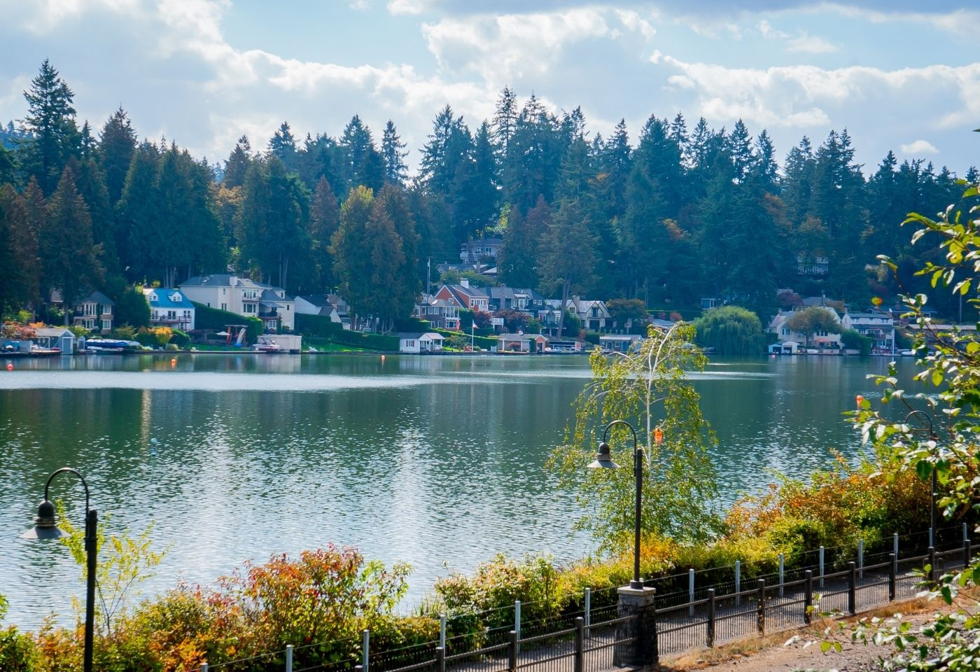 view of homes on Lake Oswego